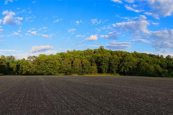 There's a lot to consider when selling farmland